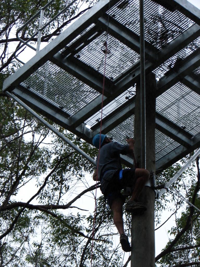 Climbing Pole 022 (Medium)