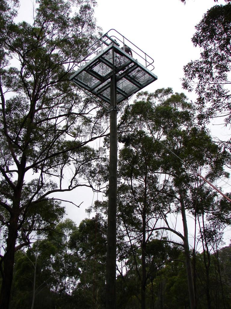 Climbing Pole 023 (Medium)